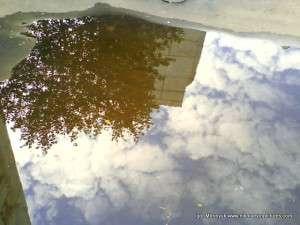 Отражение в воде дерева, дома и облака.