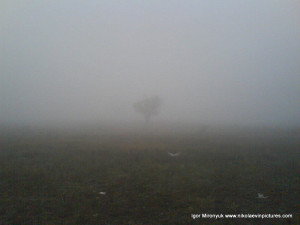 Туман в Порожнече