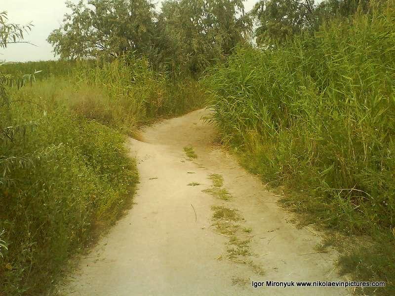 Земляная дорога как в Порожнече