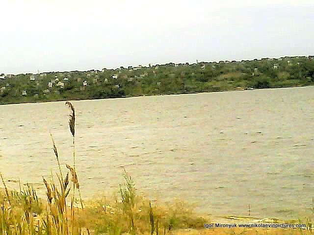 На краю Лесковской косы. Противоположный берег
