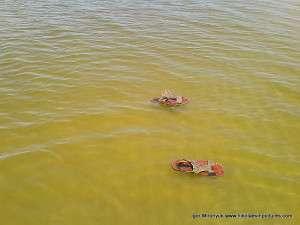 Плавающая обувь