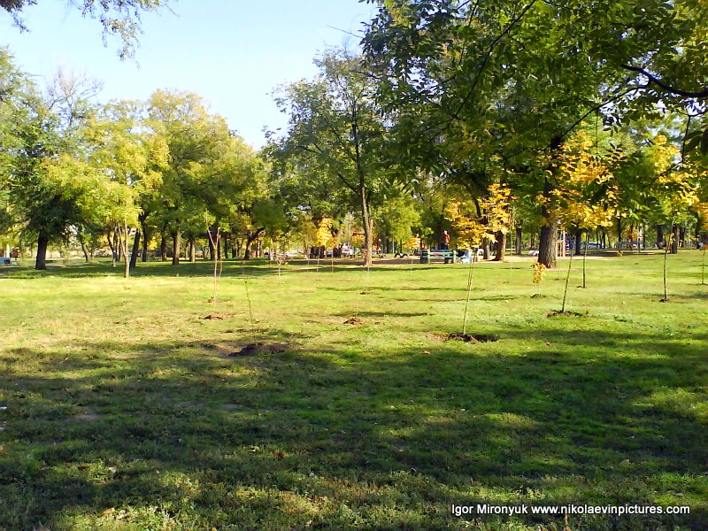 Парк возле Николаевской обсерватории